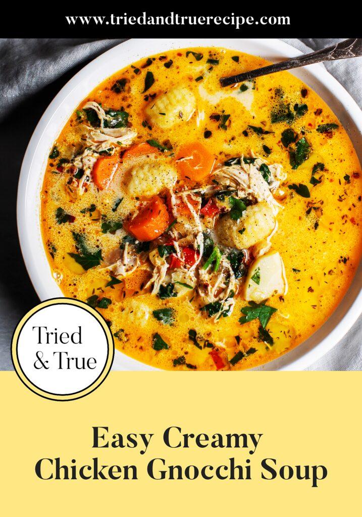 Easy Creamy Chicken Gnocchi Soup_Pinterest
