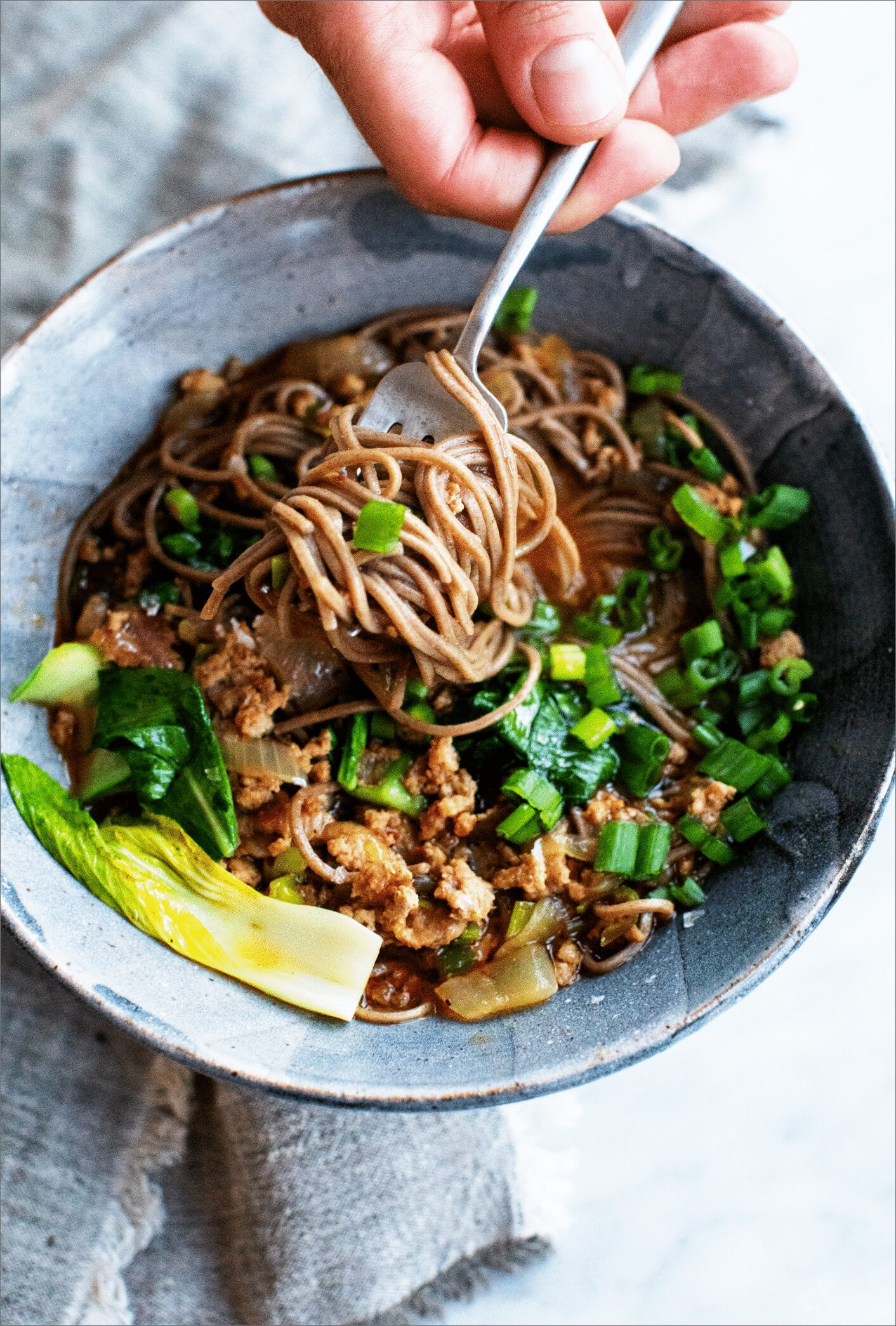 Spicy Pork and Soba Noodles_MidPage